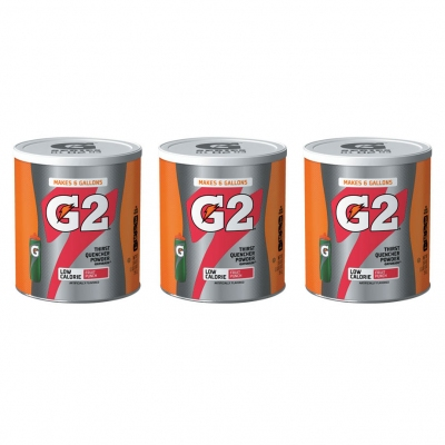 Gatorade G2 Low Calorie Fruit Punch 6 Gallon Powder - Case of 3 - 19.4 oz