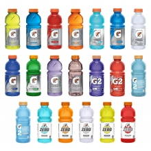 Gatorade 20 oz Wide Mouth Bottle - 24 Bottles by Pallet