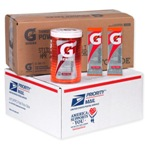Gatorade Fruit Punch Military Powder Packets - Military Gatorade Sticks