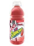 Sqwincher Fruit Punch 20 oz Zero Ready-To-Drink Bottles