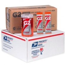 Buy Gatorade G2 Fruit Punch Military Powder Packets on sale online